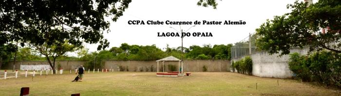 Clube Cearence de Pastor Alemão