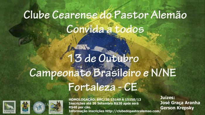 Campeonato-Brasileiro