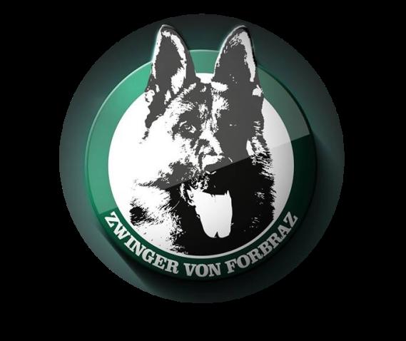 Logo-Forbraz-transparent